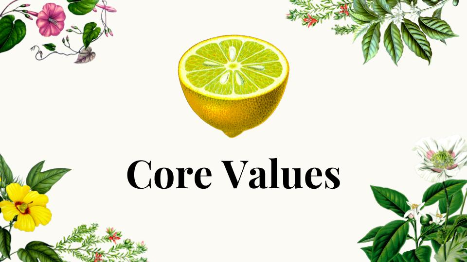 Copy of VCL Core Values presentation(5)